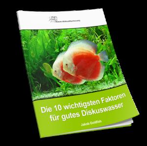 Diskusfisch Report